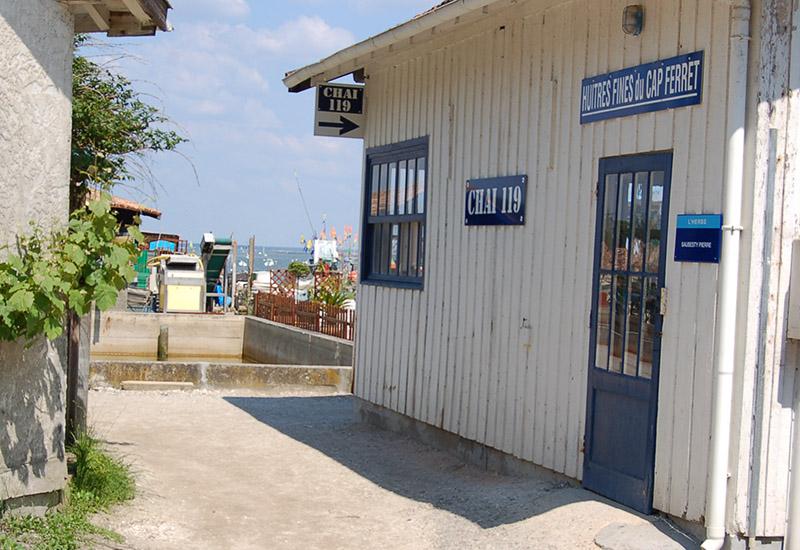 Dégustation des huîtres au village de L'Herbe (Cap-Ferret) - Crédit photo : O.S. pour FranceSudOUest