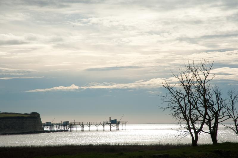 Vue de l'estuaire et de la falaise de Barzan depuis Talmont-sur-Gironde - Crédit photo: Jacqueline Poggi  - Flickr
