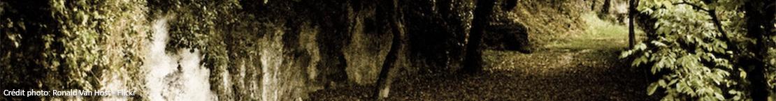 banniere-puymirol