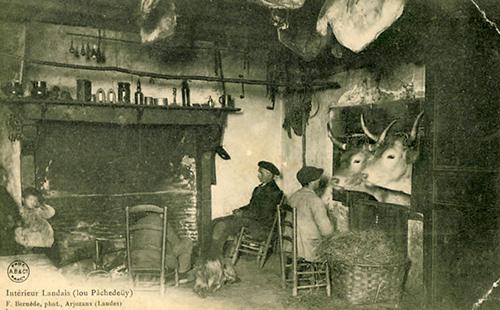 Les Landais ont été des précurseurs en matière de télé en relief.
