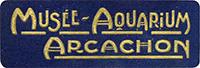 musee-aquarium_d_arcachon
