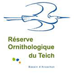 reserve-teich