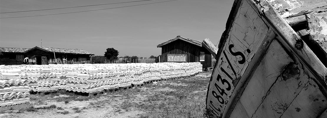 Ostréiculture à Gujan-Mestras - Crédit photo: Marc Desbordes