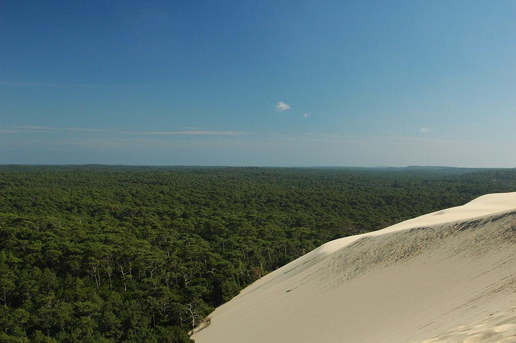 Dune du Pyla (Gironde) - Crédit photo: Barclakj - Flickr