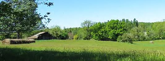 site du moulin de la ville future réserve naturelle