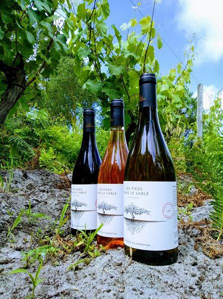 bouteilles de vin de sable