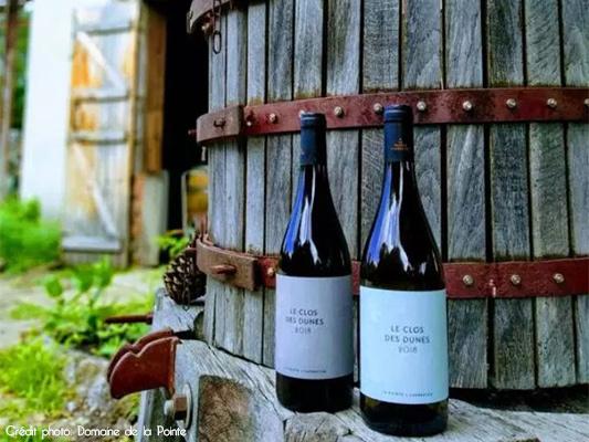 bouteilles de vin de sable des dunes